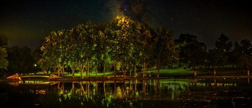 Reflected Night