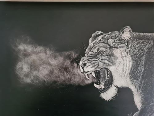 Grumpy Lioness