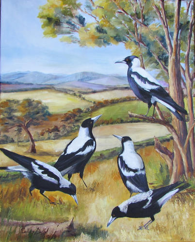 Magpie Family