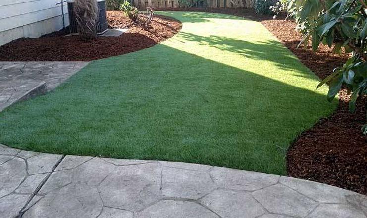 lawn replacementttt.jpg