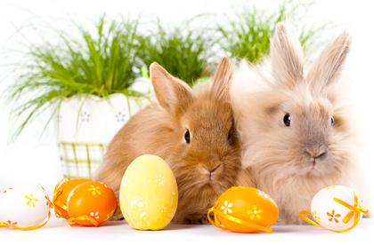 Unsere Öffnungszeiten an den Osterfeiertagen!
