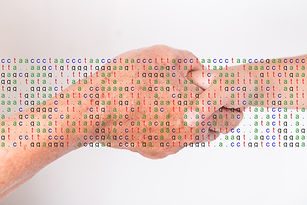 Hands with gene sequence