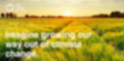190905-regenerative-agriculture-herbicid