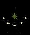 식스타-로고-02-removebg-preview (1).png