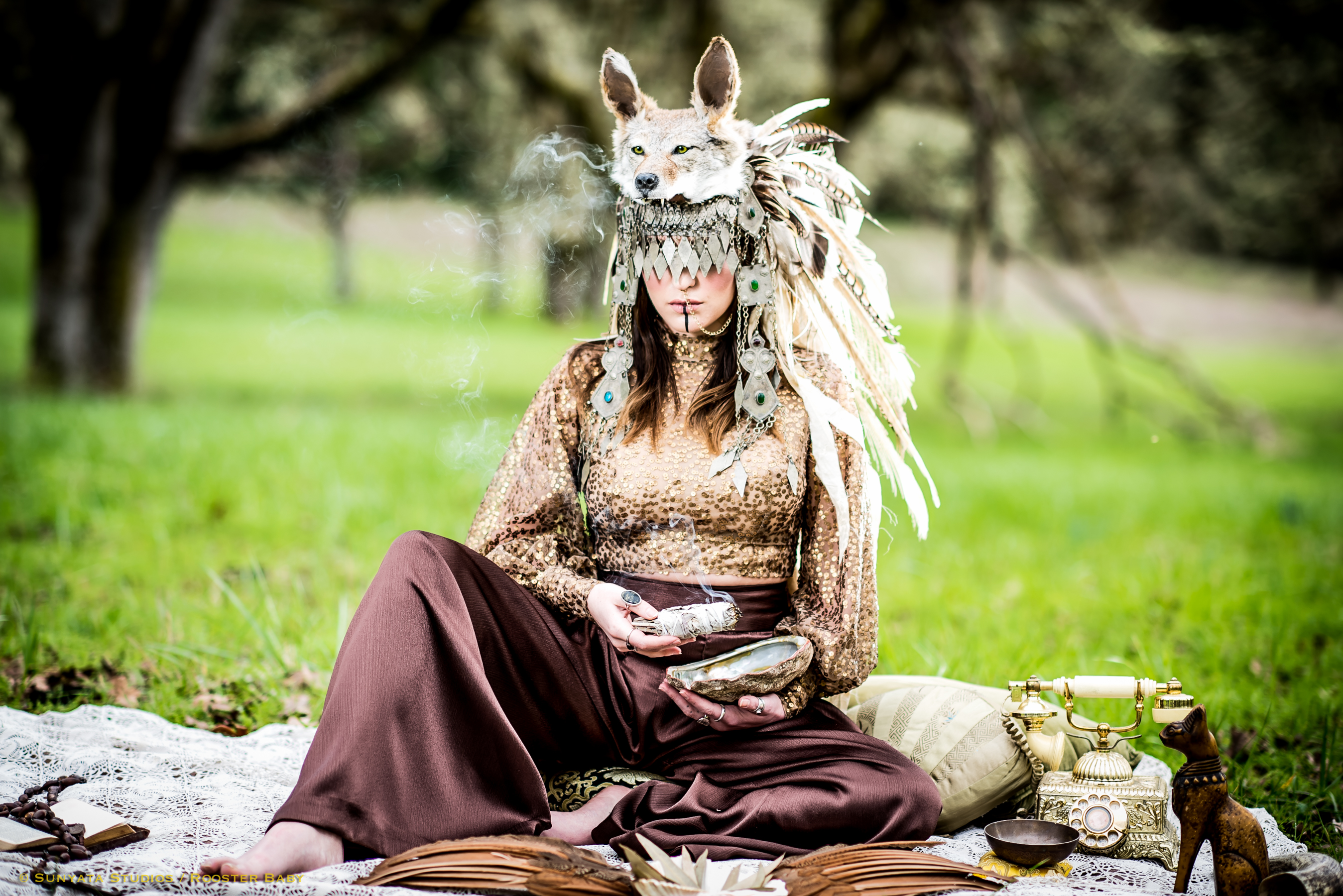 Coyote Shaman