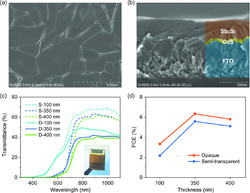 SEM Images and Performance Metrics of All Antimony Tandem Cell