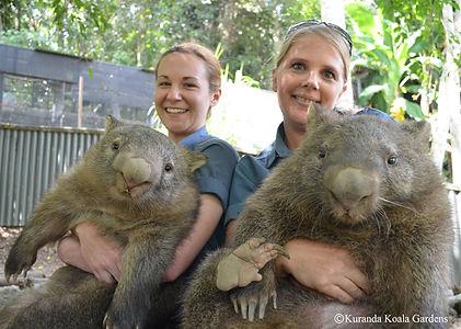 KKG wombats (1).jpg