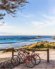ロットネスト島 サイクリング自転車.jpg