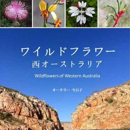 ワイルドライフフラワー 西オーストラリア
