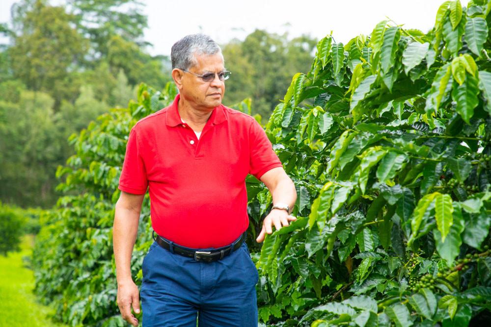 Owner Of Silvercloud Coffee From Kaʻū,Hawaiʻi