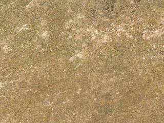 Identifying an Abbey Stone