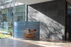 Wave Display als Trennwand