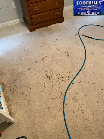 Carpet Cleaning Before-Forest-city-nc .j
