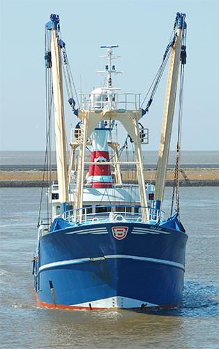 Symbolbild; Fischerboot vor Harlingen.