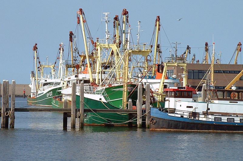 Fischerboot Harlingen