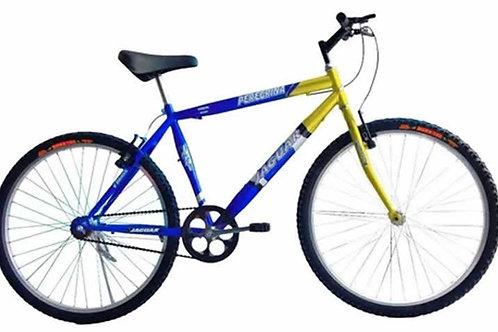 Bike   //   Bicicleta