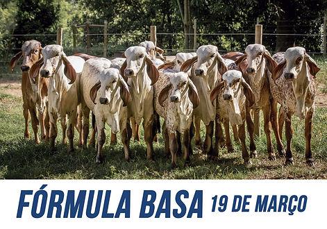 FormulaBasa2020_.jpg