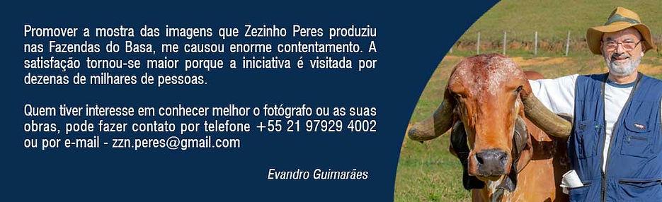 tirinha_hotsiteZZN.jpg