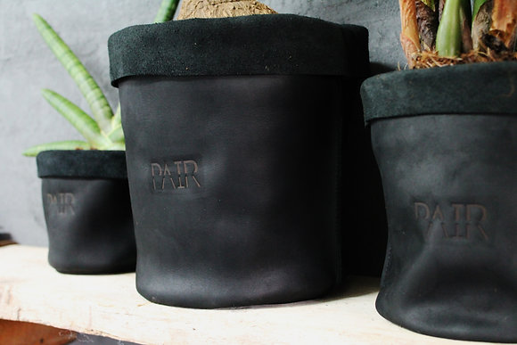 Plant Cover BLACK