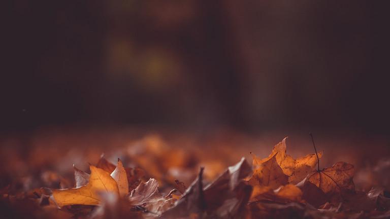 Walking the Wheel: Autumn