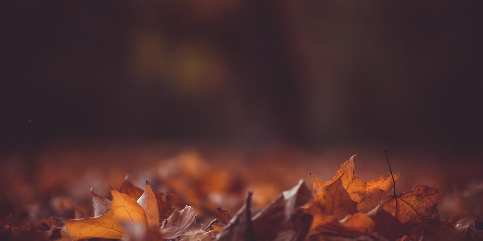 Liberale Herbsttagung