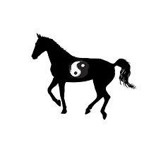 yinyang horse.jpg