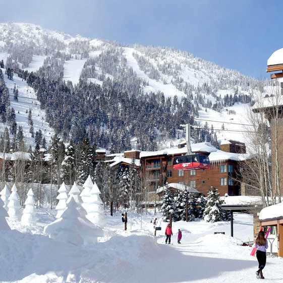 Jackson Hole Ski trip