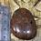 Thumbnail: Scottish Jasper Palmstone