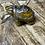 Thumbnail: Tiger Eye Tortoise