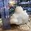 Thumbnail: Zeolite (Apophyllite/ Stilbite) 2