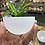 Thumbnail: Selenite charging bowls