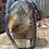 Thumbnail: Labradorite Fully Polished Freeforms