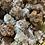 Thumbnail: Calcite unpolished
