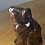 Thumbnail: Dog: Mahogany Obsidian