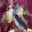 Thumbnail: Fluorite Rainbow Point