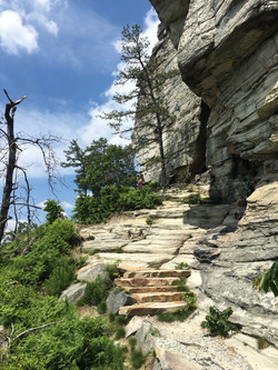 Pilot Mountain Trail-Current View