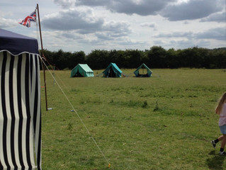 Harston Cubs