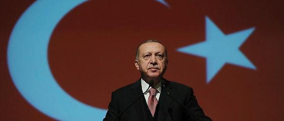 erdogan-3_edited.jpg