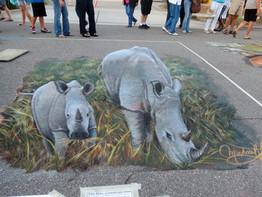 Venice 2014 Rhinos.jpg