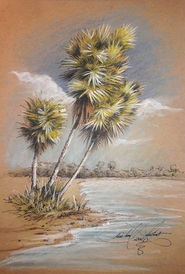 3-palms.jpg