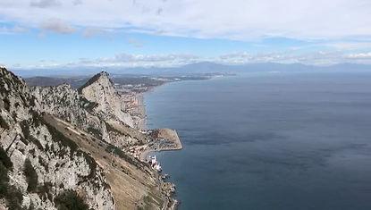Macaca sylvanus Gibraltar