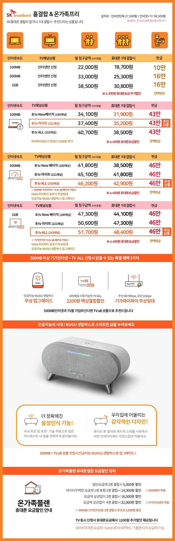 SKT브로드밴드 가격표(사이즈수정).jpg