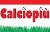 calciopiu.png