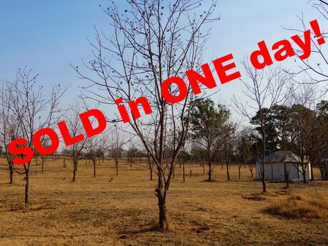 SOLD! - 6 Bedroom Farm House/Villa For Sale, Laezonia - R 2 595 000