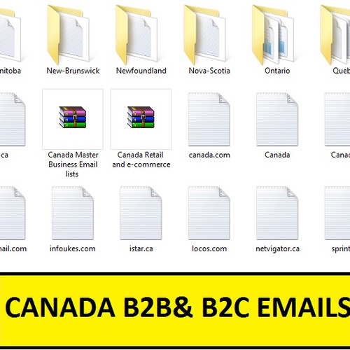 B2B Email Lists | Business Sales Leads | B2B Mailing List