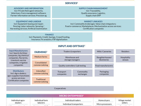Rethinking our understanding of Agri-SMEs: A comprehensive taxonomy
