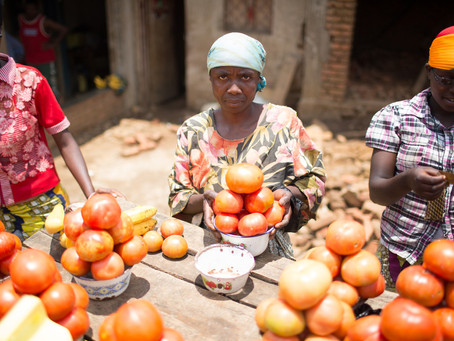 Beyond risk: How addressing transaction costs can boost lending to agricultural SMEs in Africa