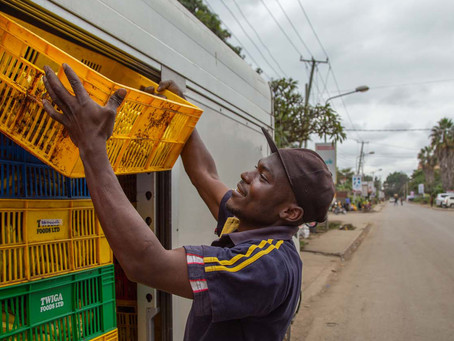 Africa: IFC announces $2 billion investment in SMEs and trade to support recovery from COVID-19