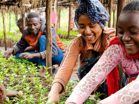 VALUE4HER initiative influencing a gender-friendly business environment for women in agribusiness