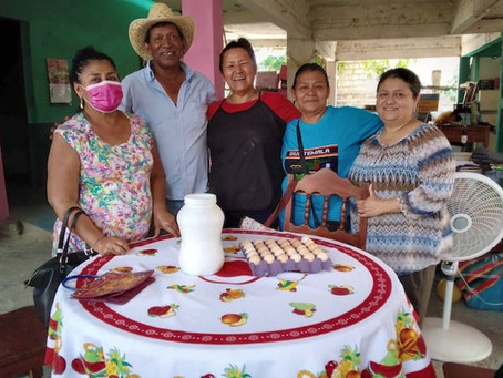 Stronger together: Mexican women form poultry cooperative, lower collective costs